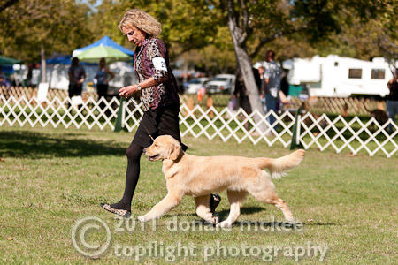 Violet in NorCal reg 6-9 class Oct 2011